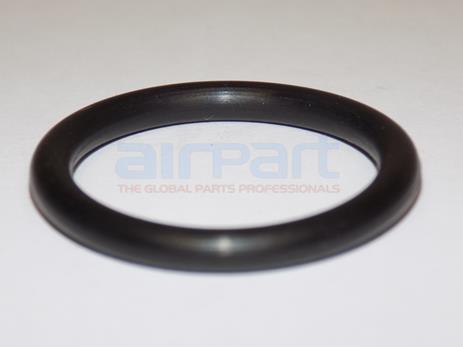 74068 Ring-Oil Level Gage Plug