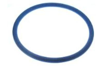 CA457-98 Fuel Cap Seal