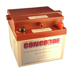 RG24-11M VR Sealed Lead Acid Battery